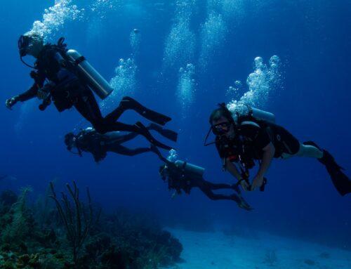 Denver Adaptive Divers: Try Scuba