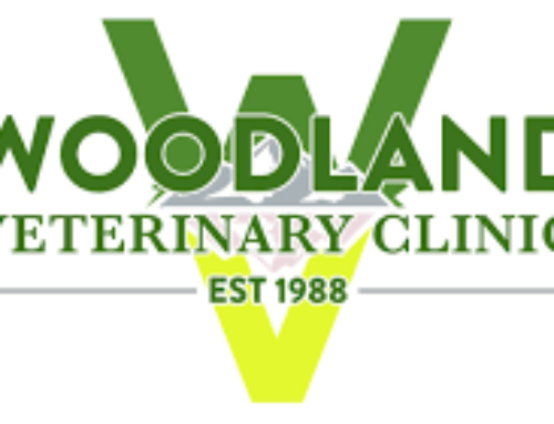 Open position: Associate Veterinarian